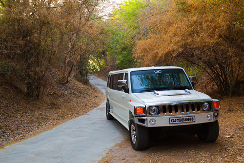 Hire limousine ahmedabadcar rental suv limo ahmedabad car hire in royal limos packages junglespirit Image collections